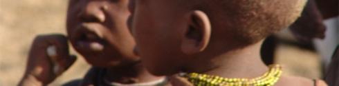 imatge WORDPRESS NAMIBIA 5