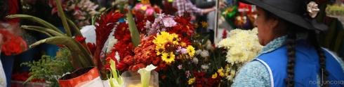 1284_mrc.flors Cuenca