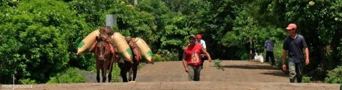 0874_carreteres Ometepe